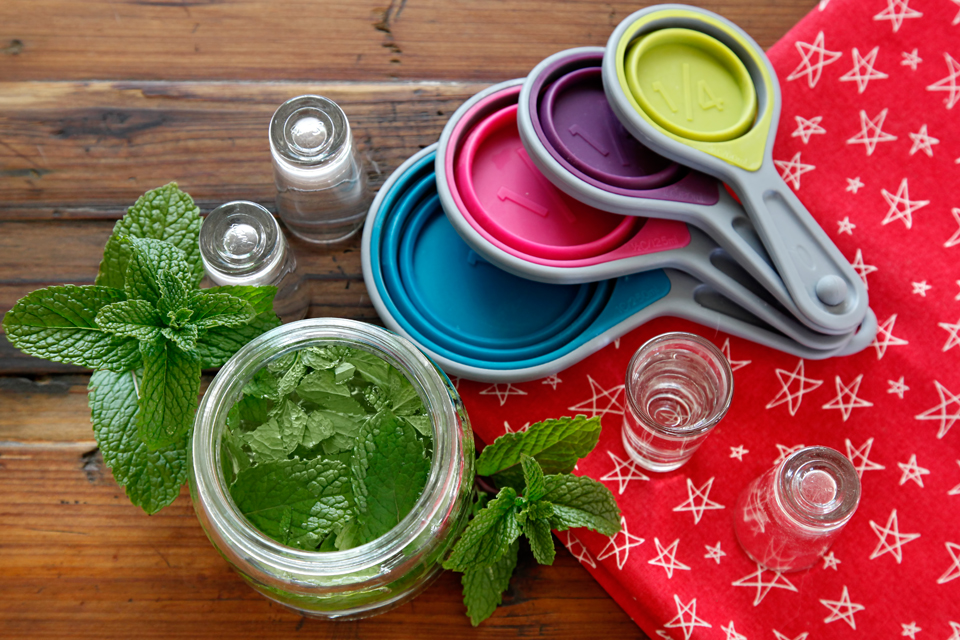 DIY Mint Extract Homemade Flavour Essence Recipe 6468e