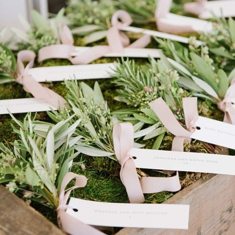 Give guests own plants take home wedding favor 9a39a