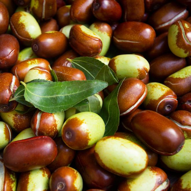 Jojoba oil certified organic